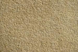 Venice plush velvet carpet samples